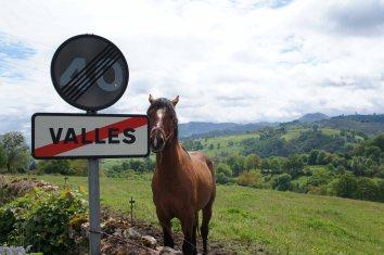 Valles, Piloña, Asturias